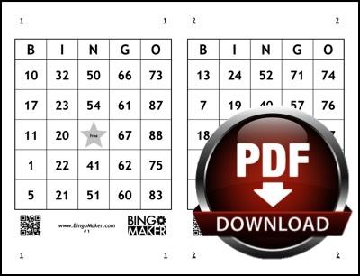 Bingo Format Download